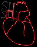 Custom Realistic Heart Shaped Led Sign 2
