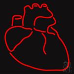 Human Heart LED Neon Sign